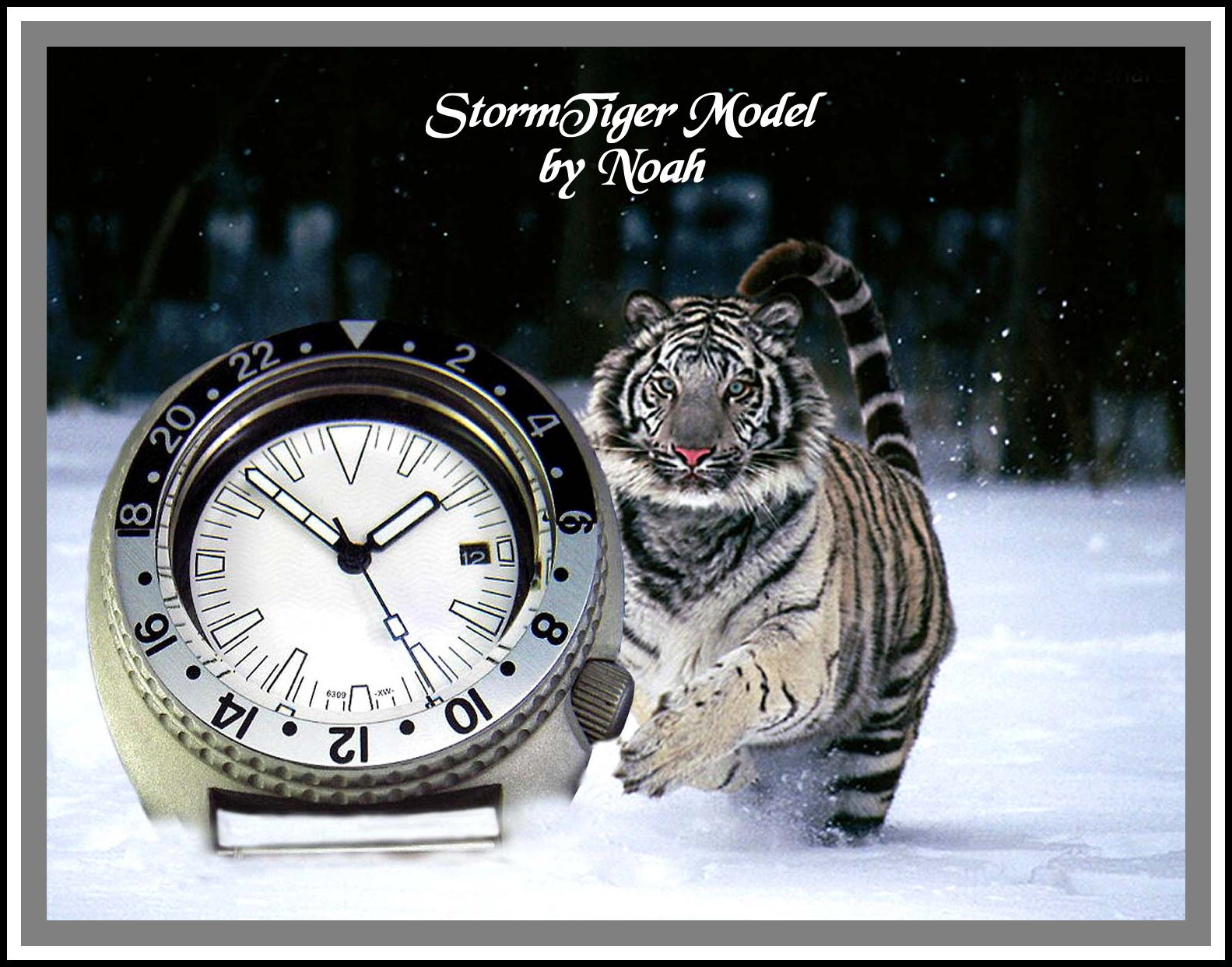 Snow Tiger Seiko 6309-7040